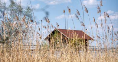 Lakeside Reed Hut