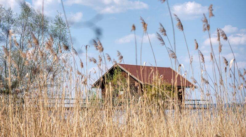Lakeside Reed Hut