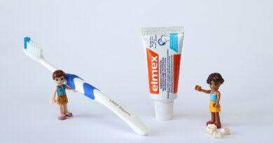 Lego Miniature Women Toothbrush  - ankedannerbeck / Pixabay
