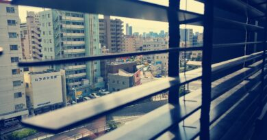 View Blinds Japan Window Road  - Nicobanderob1 / Pixabay